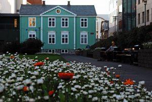 In primo piano prato fiorito con margherite bianche e papaveri e casa verde sullo sfondo