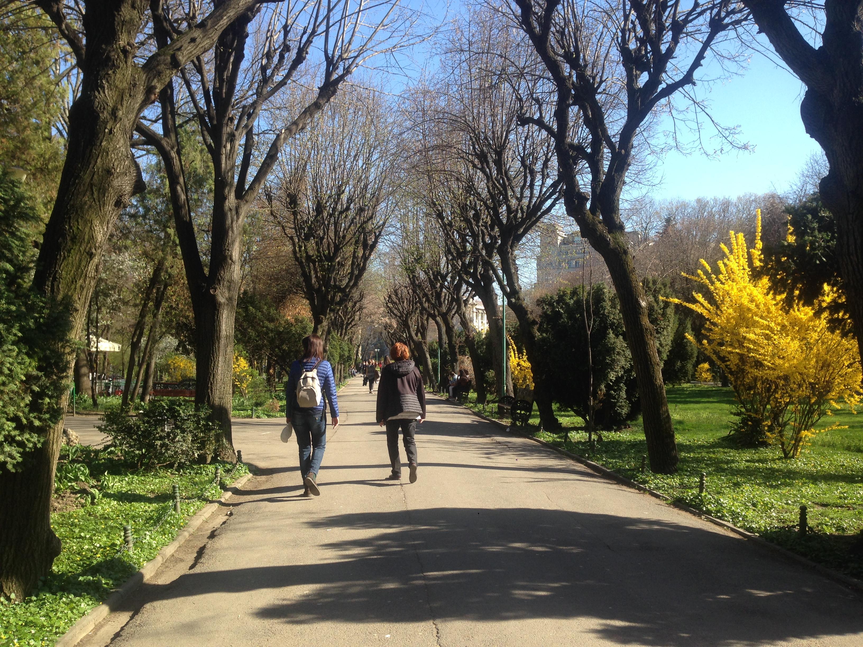 Viale alberato di un parco con persone che passeggiano